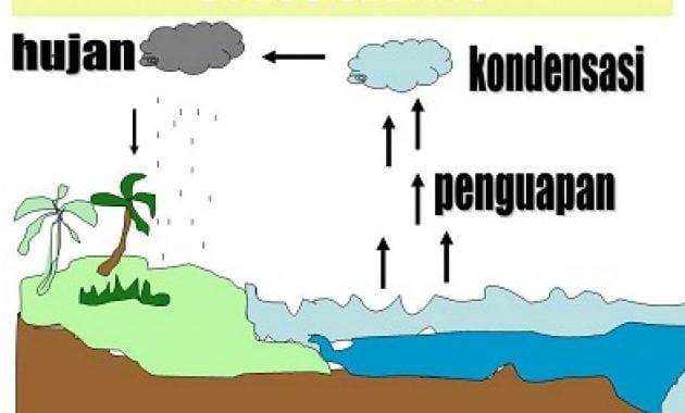 Definisi contoh bagan siklus air
