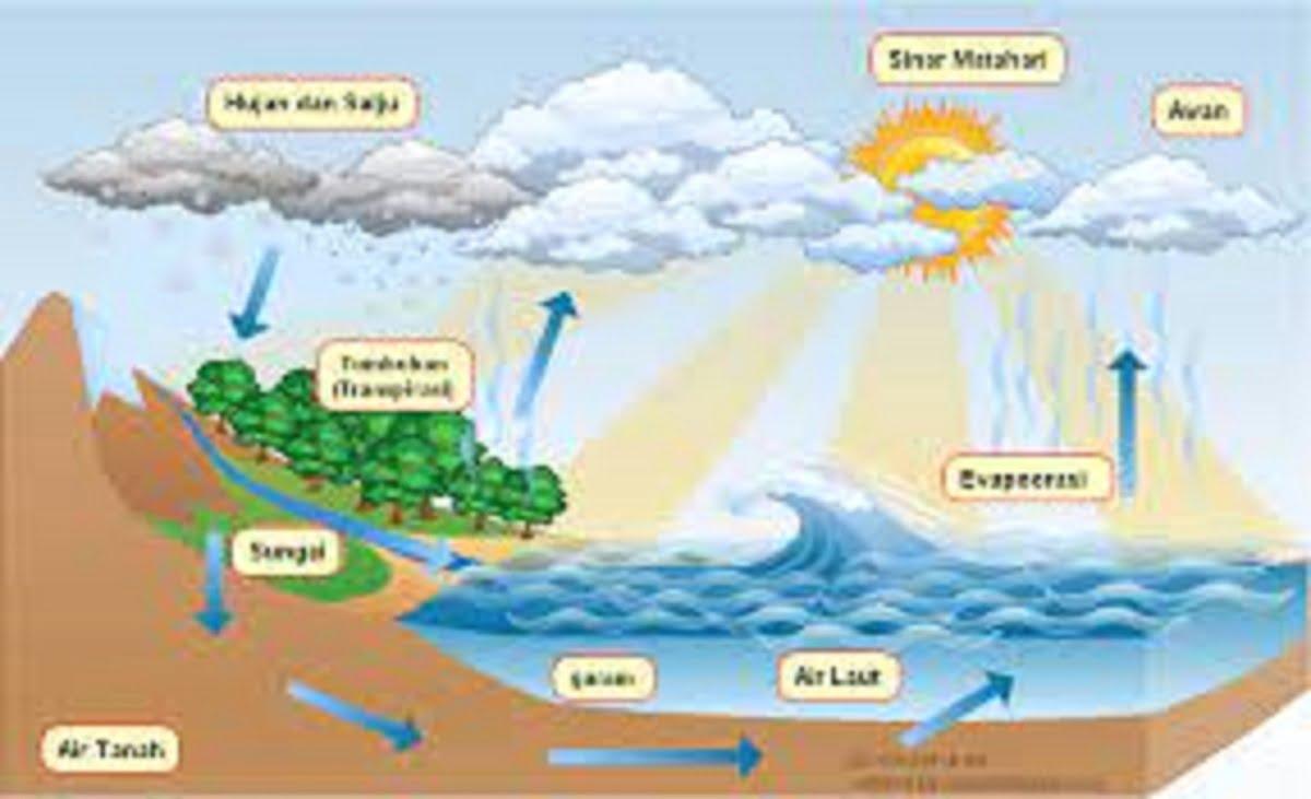 Contoh bagan siklus air